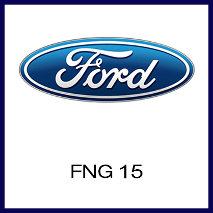fng-15